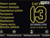 Сингури, СТО, 2021,  Житомир, Житомирская 1-ч, записаться, отзывы